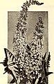 California gardening (1929) (20506305982).jpg