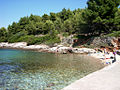 Calita en la isla de Hvar - Flickr - pululante.jpg