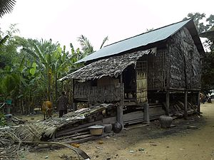 Amazing Rural Khmer House