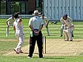 Cambridge University CC v MCC at Cambridge, England 039.jpg
