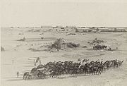 Magdhaba, with camels in foreground