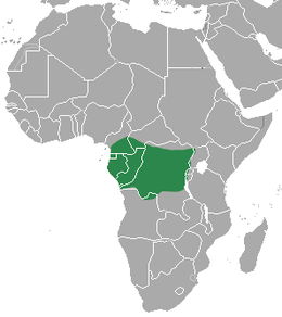 Cameroon Clawless Otter area.png