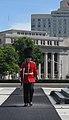 Canadian Ceremonial Guardsman.jpeg