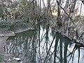 Canal Jean-Simon Cognac aval.jpg