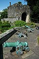 Cannons and gatehouse, Berkeley Castle - geograph.org.uk - 1441187.jpg