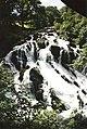 Canonteign Falls - Waterfall near Exeter - 2000 (5370494607).jpg