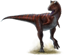 Drawing of a running Carnotaurus