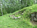 Cetatea Blidaru (23).JPG