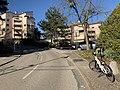 Chemin de Montpellas (Lyon) - virage et vélo.jpg