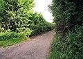 Cheriton Lane - geograph.org.uk - 947311.jpg