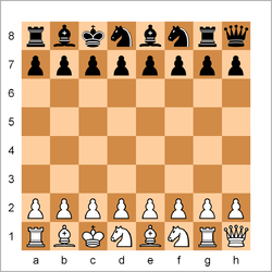 Chess960 example init position.png