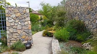 Centennial Museum and Chihuahuan Desert Gardens - Image: Chihuahuan desert garden at UTEP 2