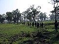 Chitwan Trekking Nepal - panoramio.jpg