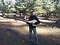 Chordophone (Cordophone).jpg