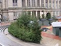 Christmas trees in Chamberlain Square - in the rain (4117584005).jpg