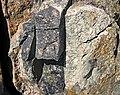 Clast-rich impact pseudotachylite (Sudbury Breccia, Paleoproterozoic, 1.85 Ga; Windy Lake Northwest roadcut, Sudbury Impact Structure, Ontario, Canada) 10 (46819355455).jpg