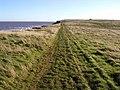 Cliff Path - geograph.org.uk - 326873.jpg