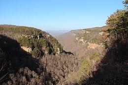 Cloudland canyon view