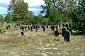 Cmentarz żydowski w Żarkach68.jpg
