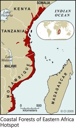 Coastal Forests of Eastern Africa Hotspot 2005 Print.tif