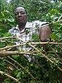 Coffee farmer in Kenya.jpg