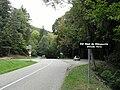 Col Haut de Ribeauvillé.jpg