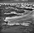 Columbia Glacier, Terminus, Terentiev Lake, September 3, 1966 (GLACIERS 971).jpg