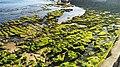 Cores de Cascais.jpg