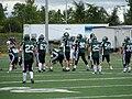 Cougars (football)01.JPG