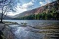 County Wicklow - Glendalough - 20200315171059.jpg