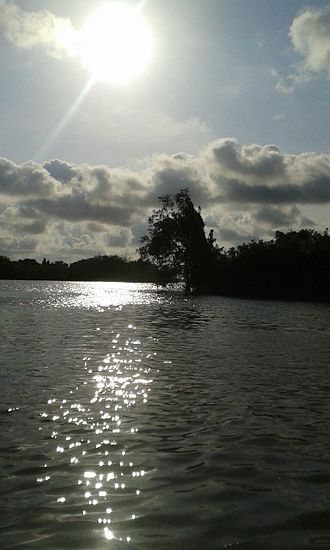 Eastern Obolo - A view of the Obolo River, Eastern Obolo, Nigeria