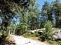Coyolles (60), la cave du Diable en forêt de Retz 14.jpg