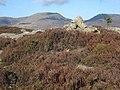 Craig y Ganllwyd. - geograph.org.uk - 398238.jpg