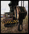 Crane (2179421122).jpg
