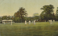 Cricket Ground, Harborne.png