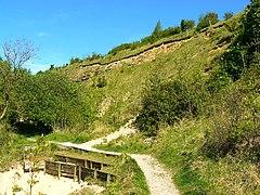 Crickley Hill and Barrow Wake - Wikiwand