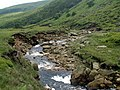 Crowden Great Brook - geograph.org.uk - 469439.jpg