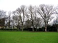 Croydon, Trees in Wandle Park - geograph.org.uk - 1776233.jpg