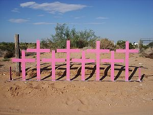 Female homicides in Ciudad Juárez - crosses erected in the place where the corpses of eight women were found in 1996
