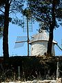 Cucugnan (France) Moulin.jpg
