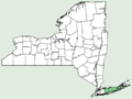 Cucurbita maxima NY-dist-map.png