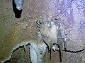 Cueva de Valporquero.025 - Vegacervera (Leon).jpg