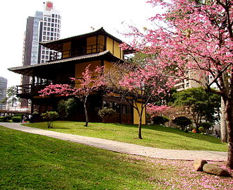 Japanese Brazilians - Cherry blossom in Japan's Square in Curitiba, Paraná.