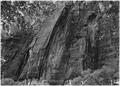 Curvilinear fractures, east wall of Temple of Sinawava. - NARA - 520443.tif