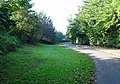 Cycle Track and Footpath - geograph.org.uk - 656671.jpg