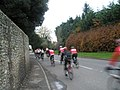 Cyclists just a blur on the B2146 at Funtington - geograph.org.uk - 1045885.jpg