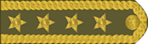 Petr Pavel - Image: Cz Army 2011 OF9 Armadni general shoulder h