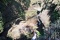 Davis Fall, Nepal-WLV-1772.jpg