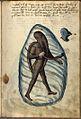 De Alte Armatur und Ringkunst Talhofer 093.jpg