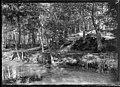 De Hofvijver bij de Kattenberg - Regionaal Archief Alkmaar - FO1400049.jpg